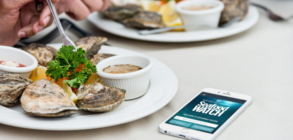 seafood-watch-app-restaurant